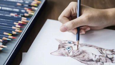 Photo of بهترین مداد رنگی های ایرانی و خارجی