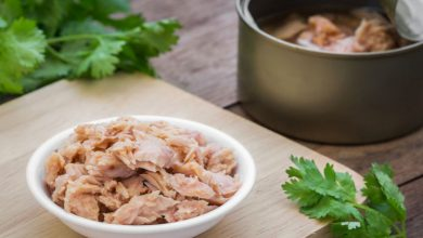Photo of بهترین تن ماهی ایرانی چی بخریم؟