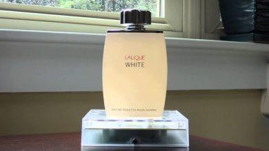 خرید ادکلن lalique مردانه اصل